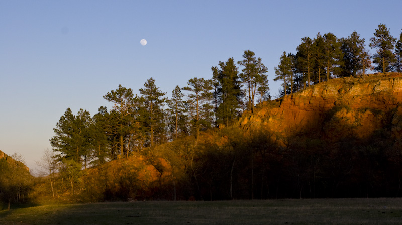 Moon Above Forested Hillside At Sunset