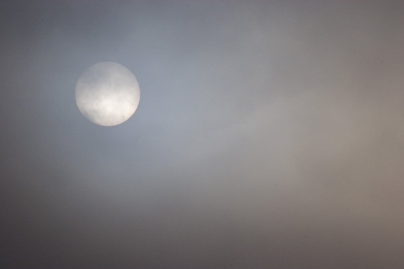 Sun Through Morning Fog