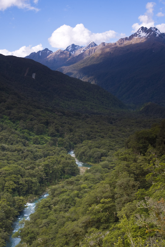 Mountains Above The Hollyford River