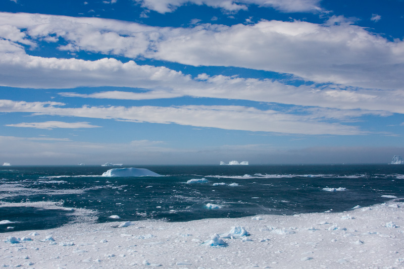 Icebergs And Brash Ice