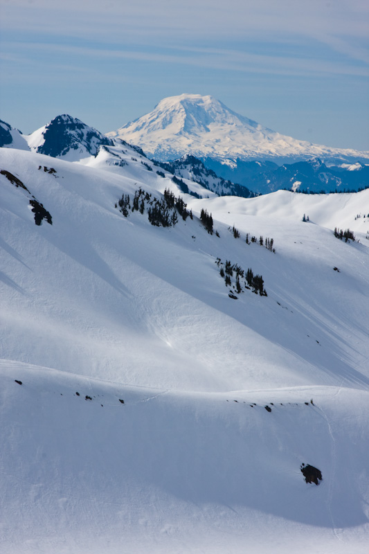 Mount Adams Above The Nisqually Glacier