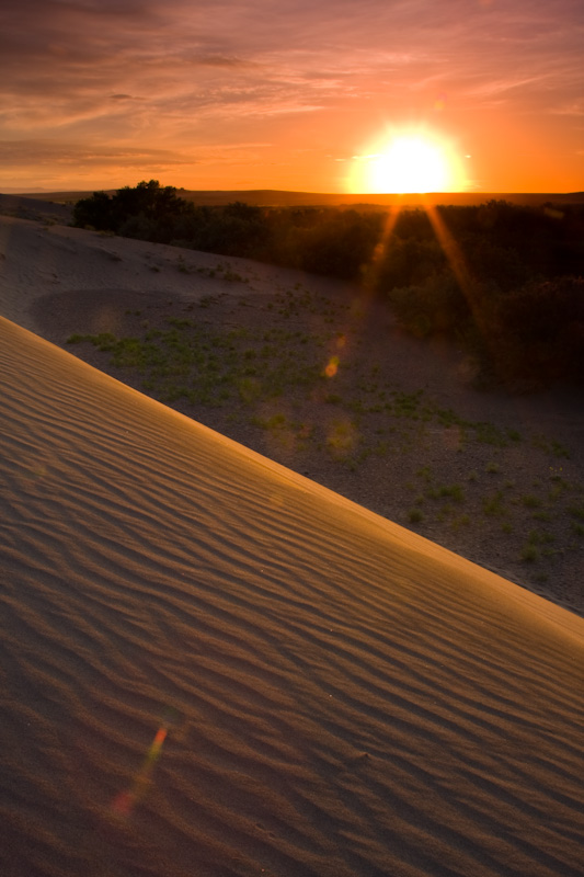 Sunrise And Dune