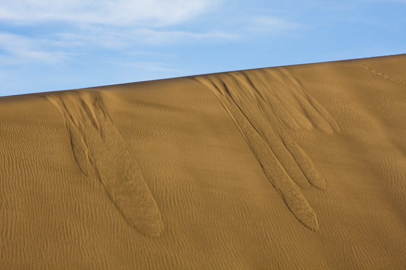 Patterns In Sand Dune
