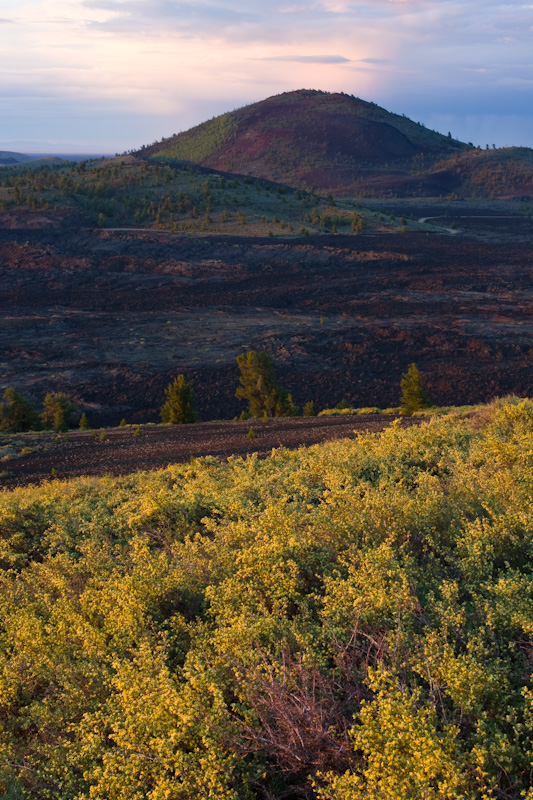 Flowers And Volcanic Cone At Sunrise