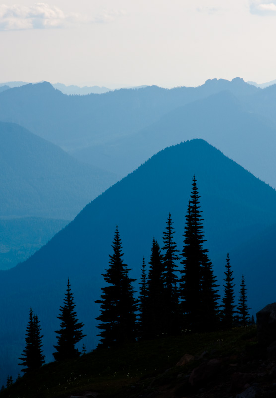 Subalpine Firs Silhouetted Against Peaks Of The Nisqually River Valley
