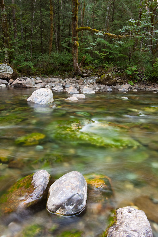 Rocks In The Snoqualmie River