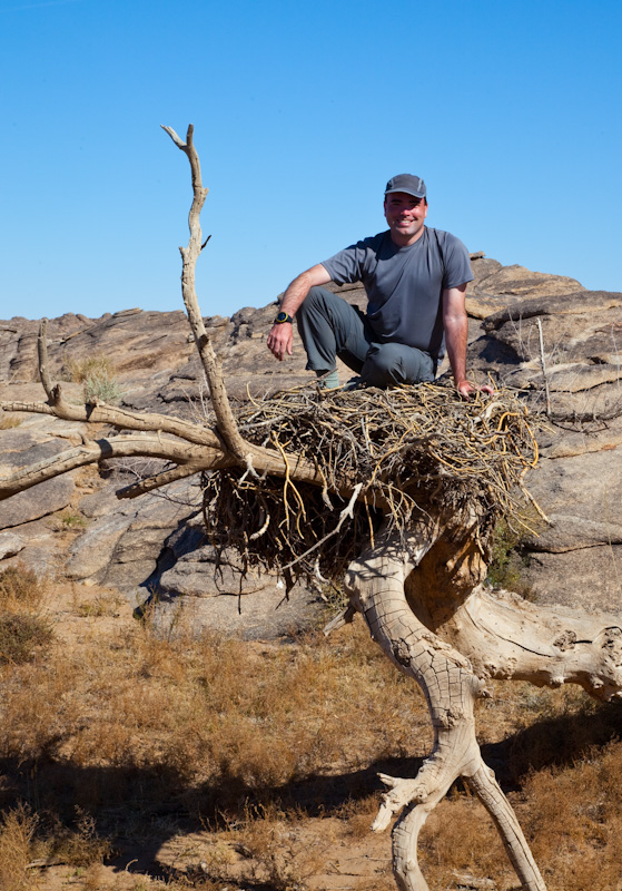 Me In A Cinareous Vulture Nest