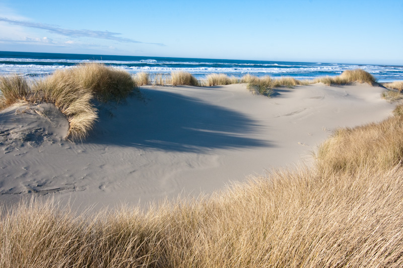 Dunes And Beach Grass