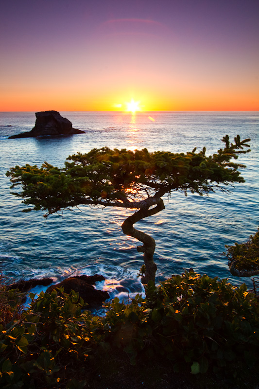 Cape Flattery At Sunset
