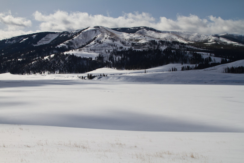 Lamar Valley In Winter
