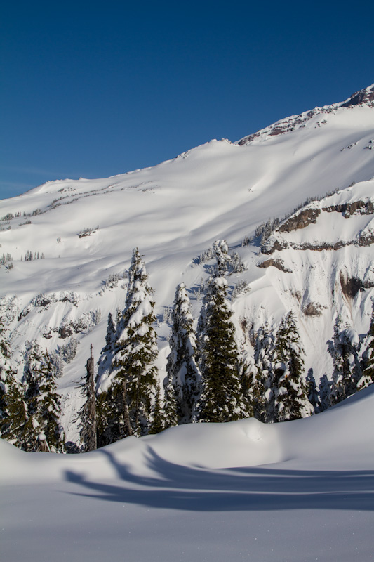 Snow On Slopes Of Mount Rainier