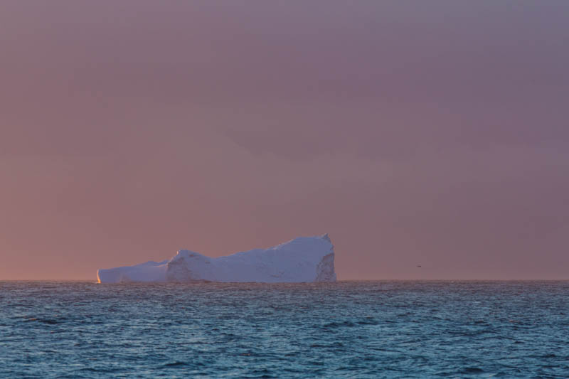Iceberg At Sunrise