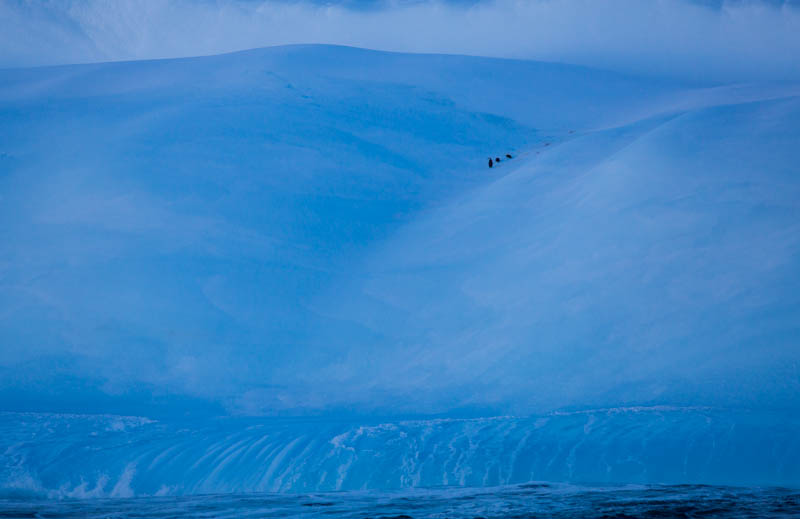 Chinstrap Penguins On Iceberg