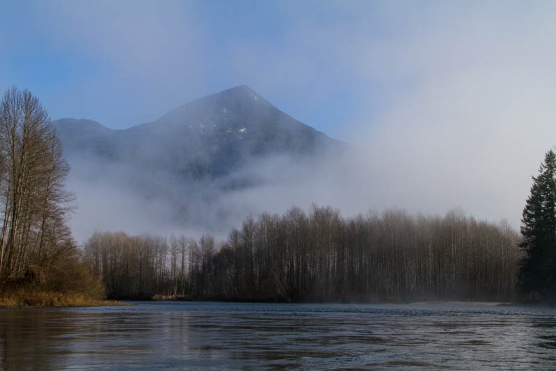 Shores Of The Skagit River In Fog