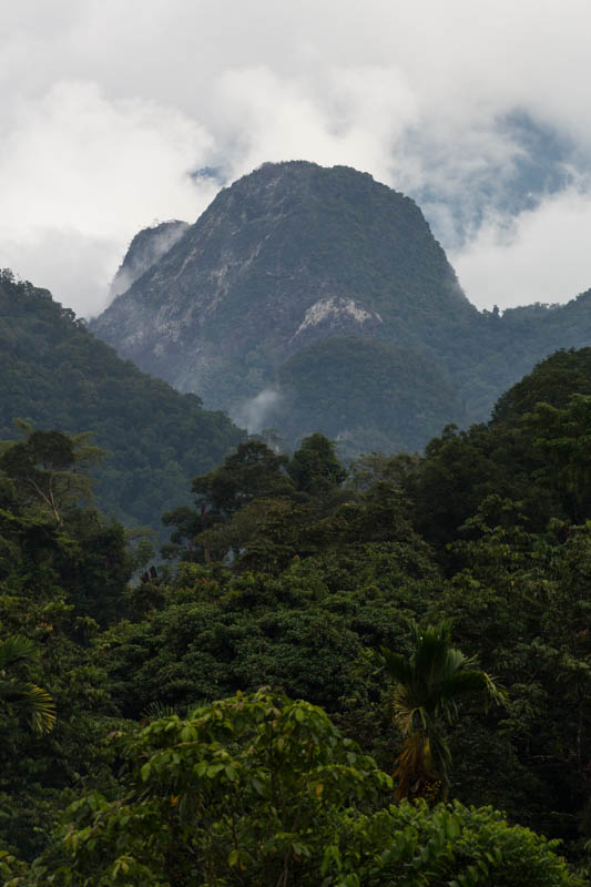 Clouds Above The Mulu Mountains