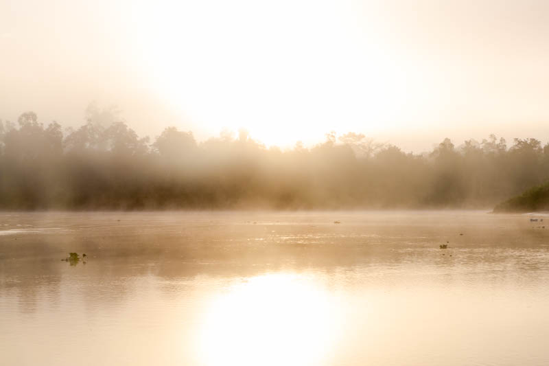 Sunrise On The Kinabatangan River